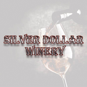 silver dollar winery, wine, winery, texas, bedford